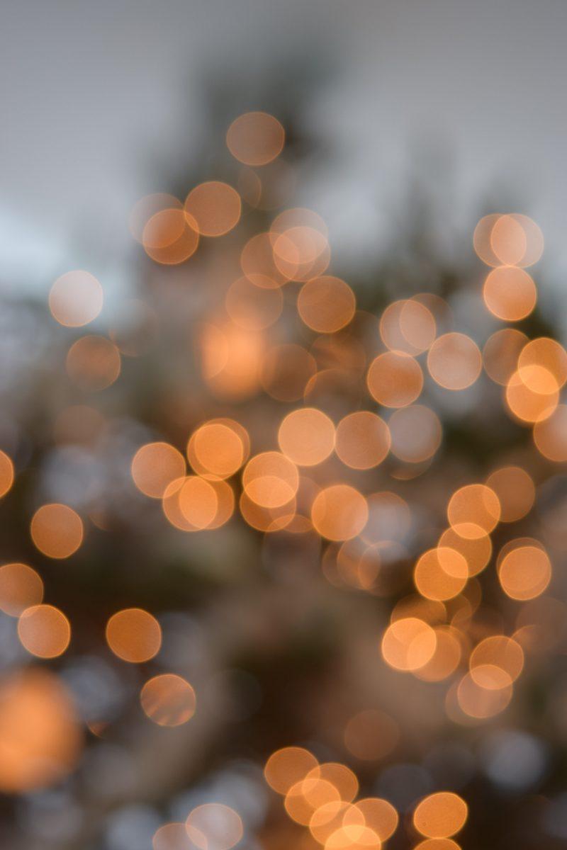 Julkonsert – Gammlia julmarknad – 8 december