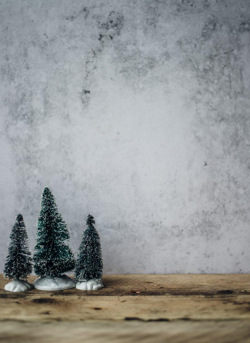 Julstämning med Umeå Vokalensemble – Grisbackakyrkan – 9 december